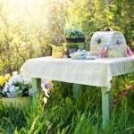 Bylinky z vaší zahrady, na co se těšit na jaře.