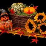 Podzimní dekorace do našich domů a bytů