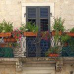 Okenní truhlíky na podzim