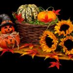 Dekorace na Halloween – Tipy a inspirace