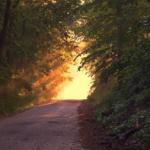 Příjezdová cesta přes cizí pozemek a věcné břemeno